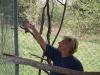 zoo-zlatar-bistrica (48)