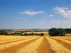Informacije o Agenciji za poljoprivredno zemljište