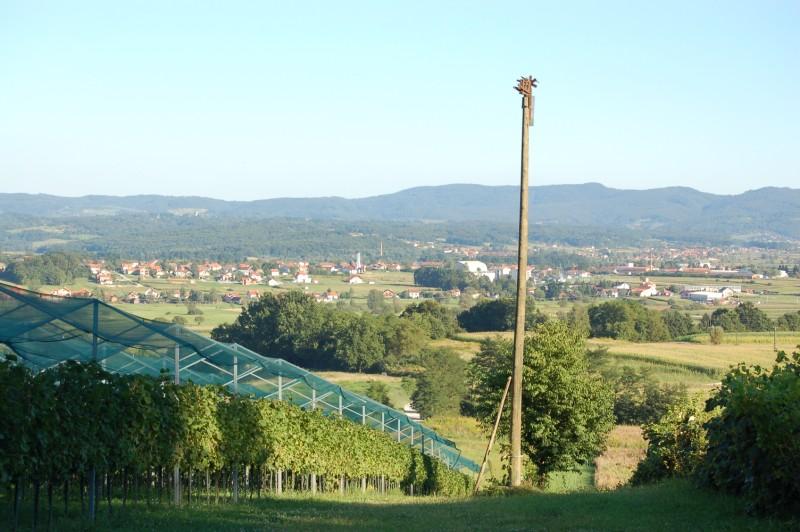 Zlatar-Bistrica (56)