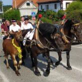 Tradicionalno 19. vozočašće konjskih zaprega…
